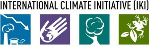 International Climate Initiative